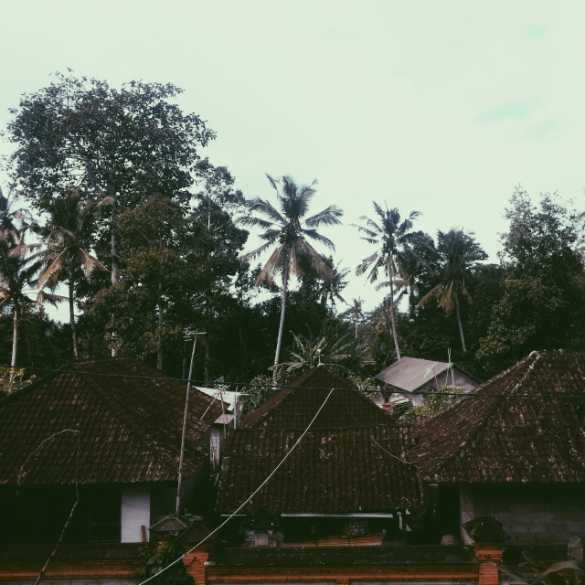 Balinese village 'skyline'