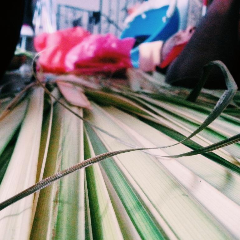 Leaves used to weave the Ketupat