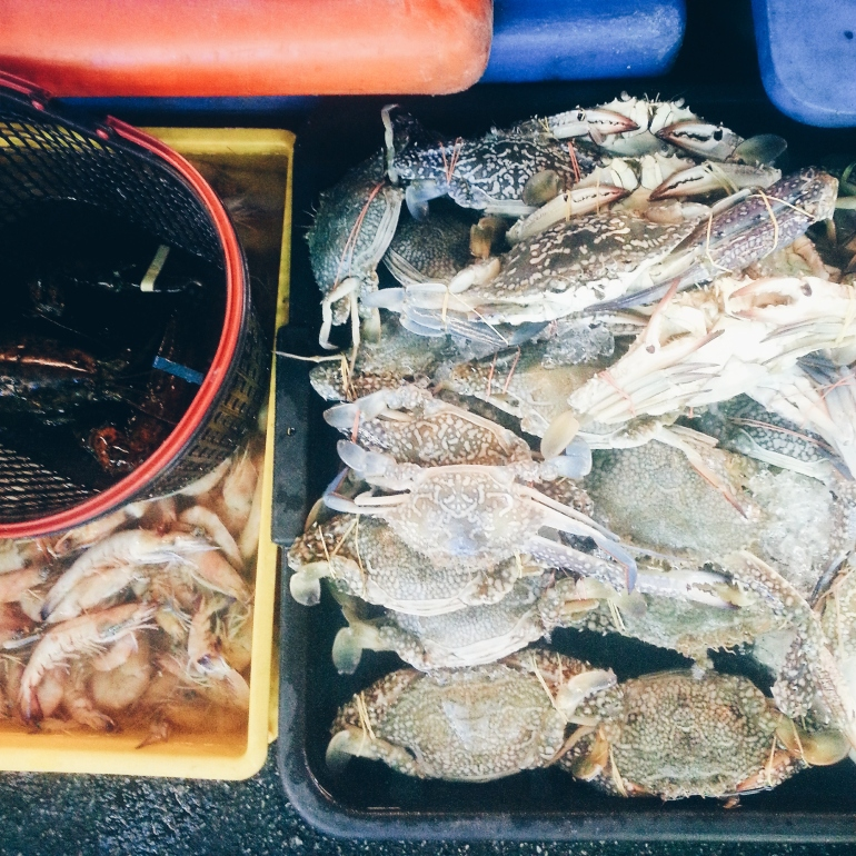 More crabs and prawns...